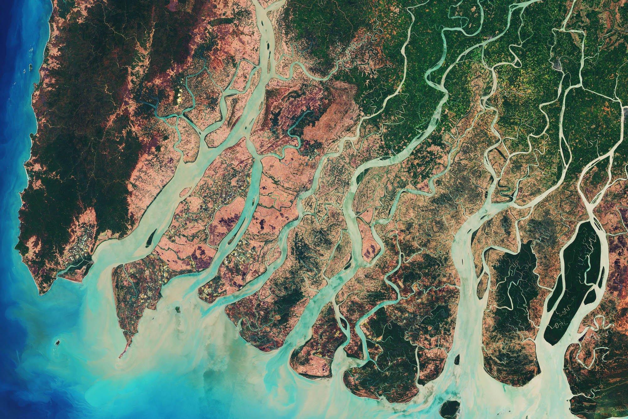 Fractal River Delta