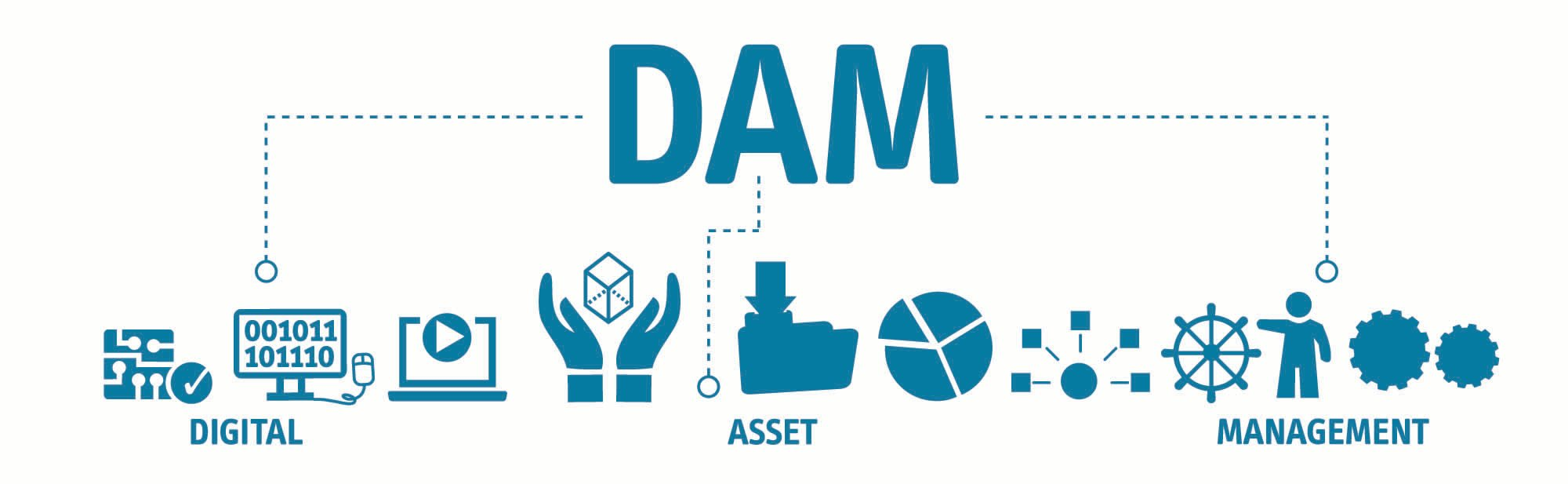 DAM Digital Asset Management Organization Concept